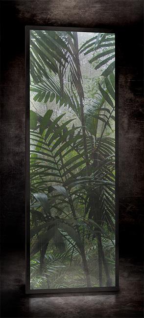 Jungle ReF. D – 018